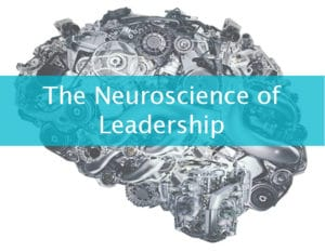 Neuroscience of leadership banner for Dynamic Cafe